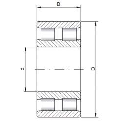 105 mm x 145 mm x 40 mm  ISO NN4921 cylindrical roller bearings