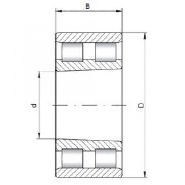 105 mm x 145 mm x 40 mm  ISO NN4921 K cylindrical roller bearings