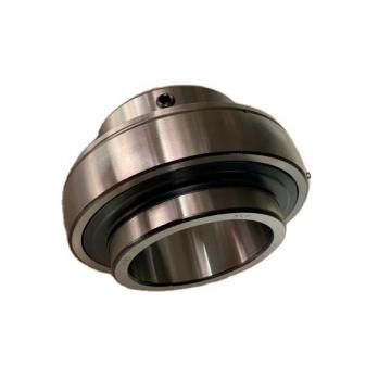 2 Bolts Ucpa205-15 Cast Housed Pillow Block Bearing Unit, 15/16in, Housing PA205 with Insert Ball Bearing UC205-15